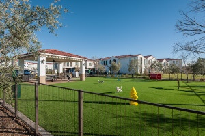 ALMERIA - Dog Park